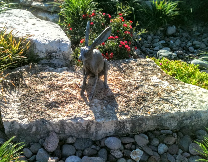 Visit the Texas Sculpture Gardens for some Family Fun in Frisco!