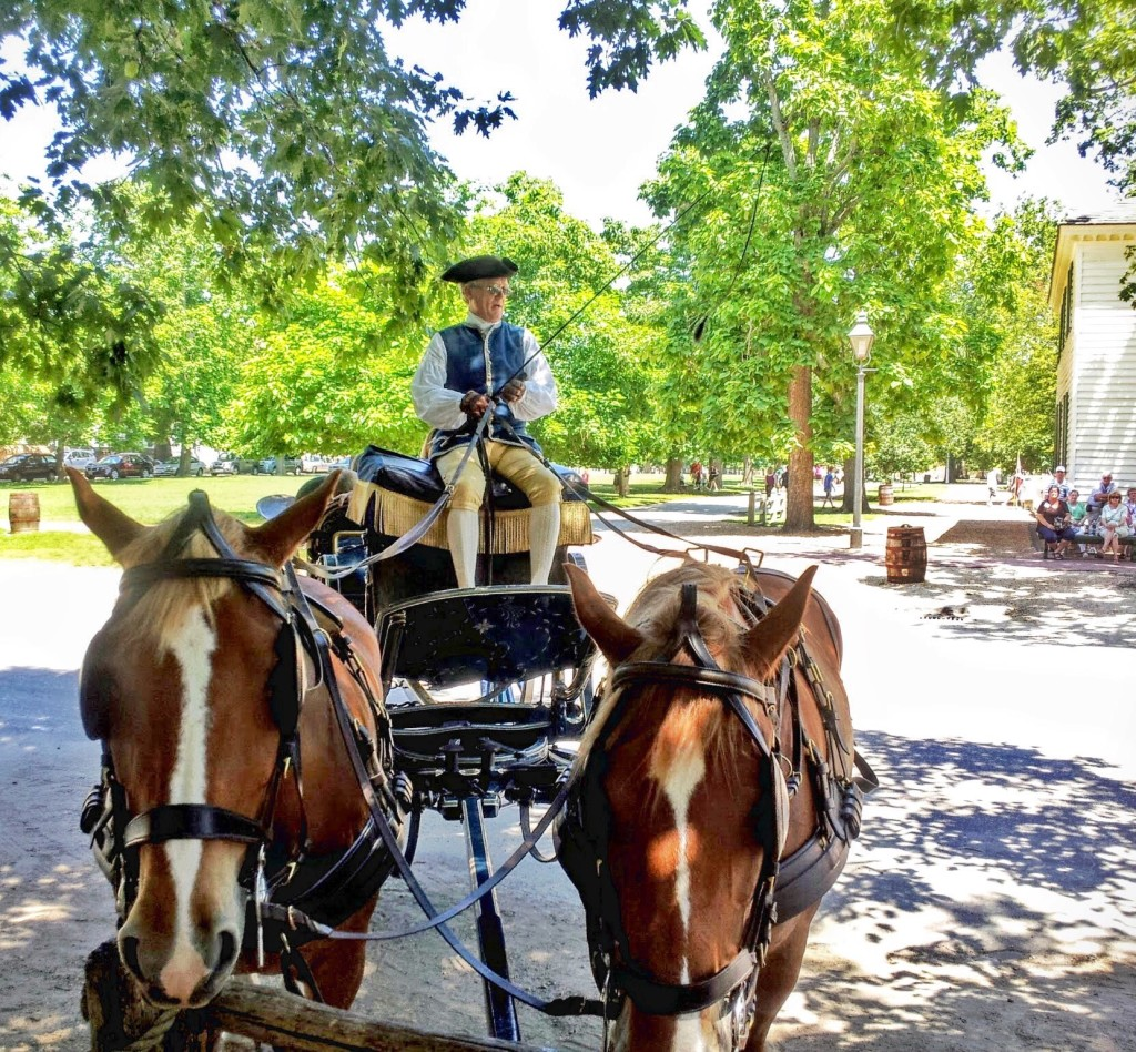 Horses in Colonial Williamsburg