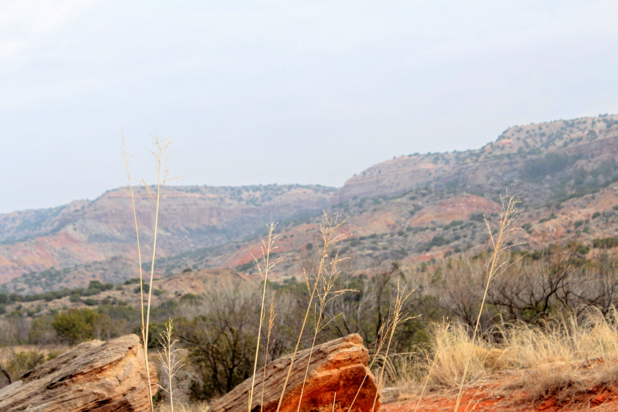 Exploring Palo Duro Canyon - Indian Grass and Rugged terrain