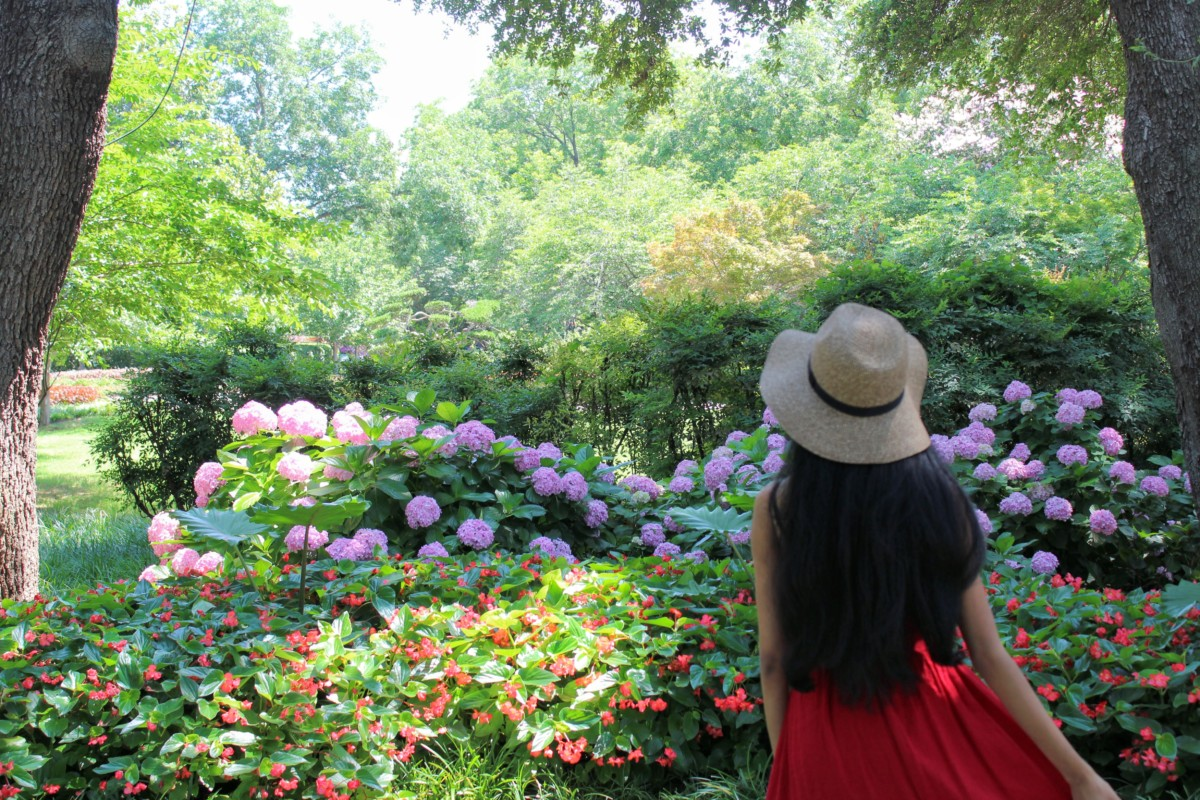 Dallas Highlights: Dallas Arboretum Gardens