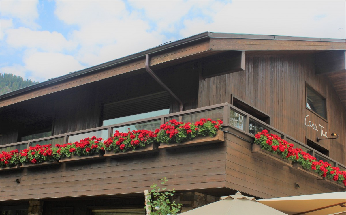 Casa Tua entrance in Aspen (lots of red flowers against the cabin-style wooden restaurant)