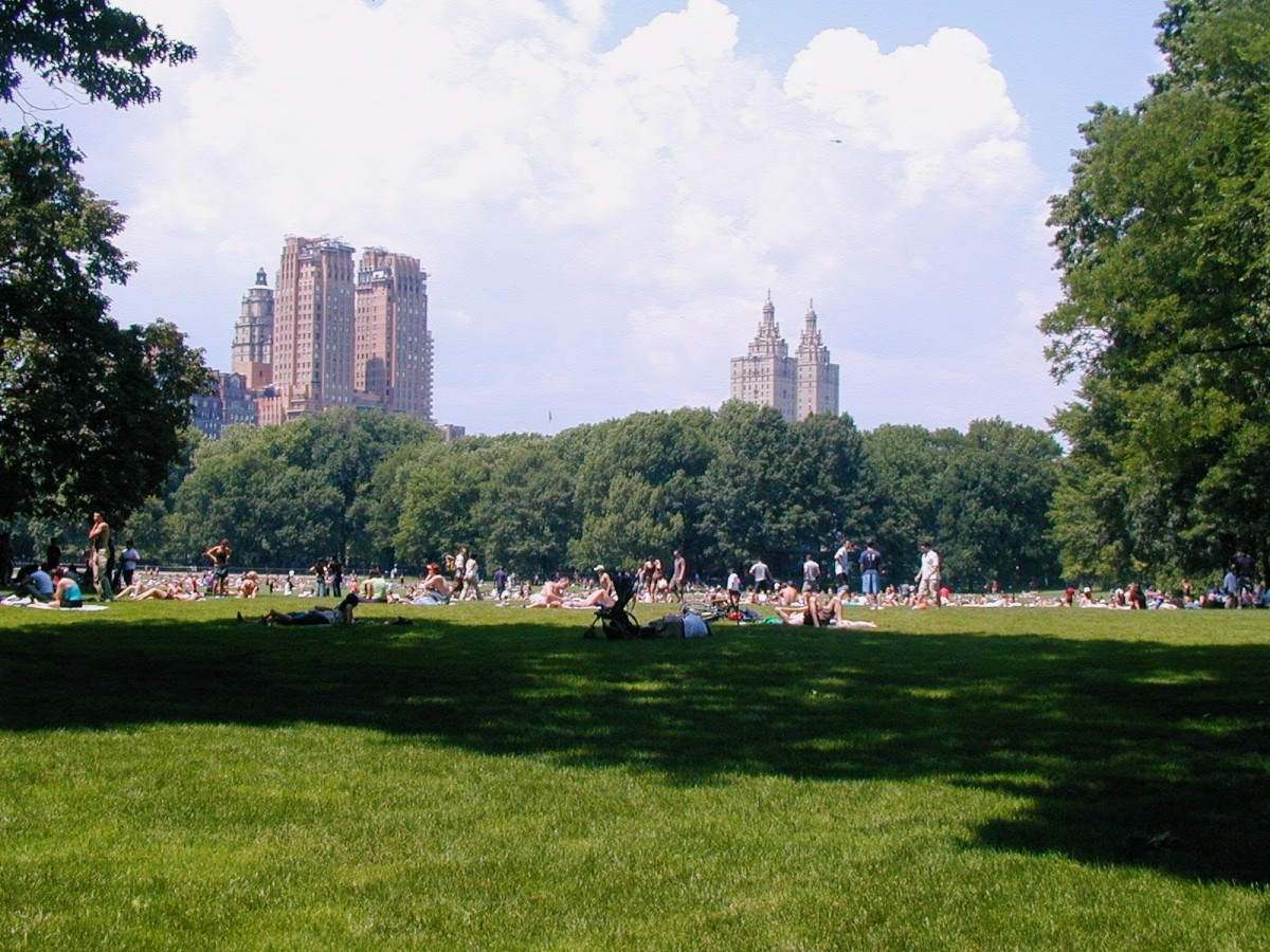 Tips For Visiting New York City For The First Time That You Need To Know: Know that Central Park is one of the best free things to do in NYC. People are lounging on the grass with picnic blankets.