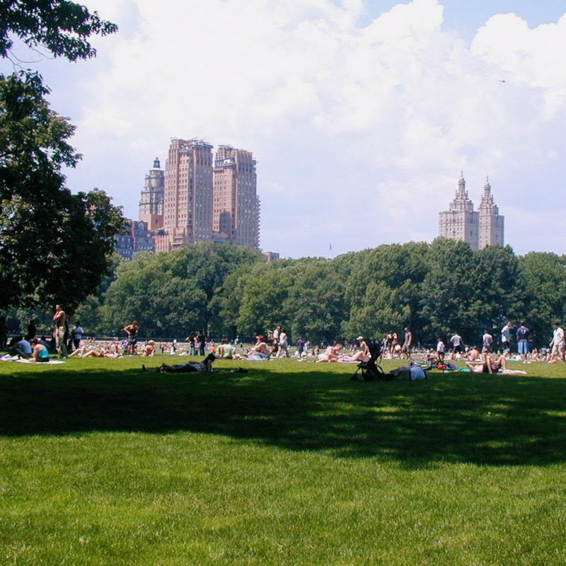 Top Tips For Visiting New York City For The First Time