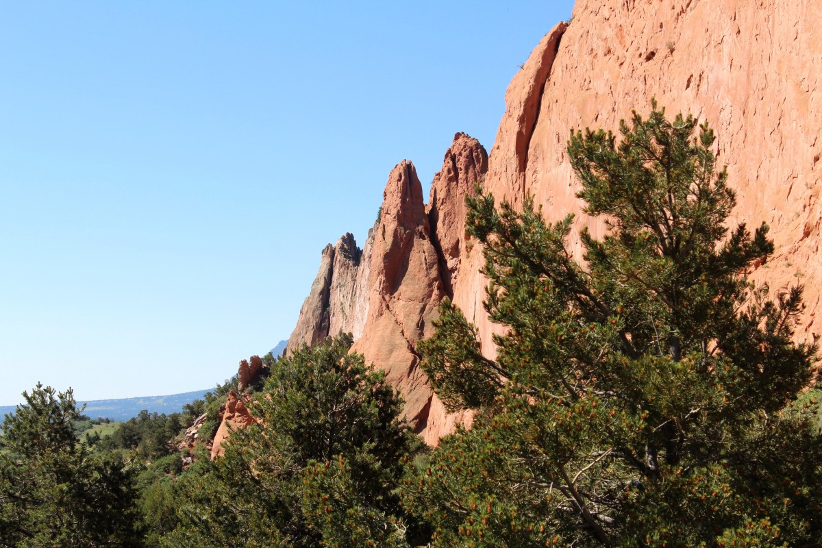 Garden of the Gods facts: Garden of the Gods is not an actual garden but there is some light shrubbery.