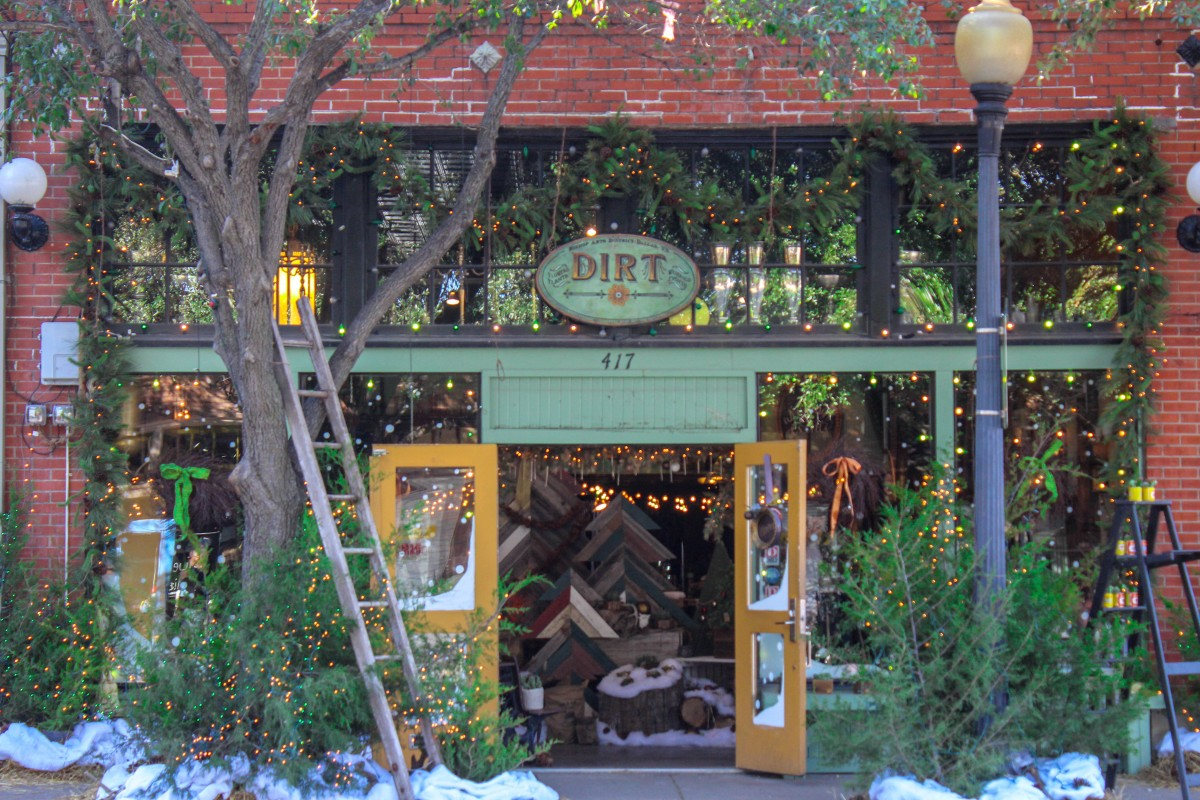 This is the storefront of Dirt in Bishop Arts District. The storefront entrance is bright green (though the building is brick), including the shrubs outside. It looks very festive.