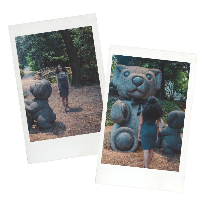 Teddy Bear Park Dallas Postcard