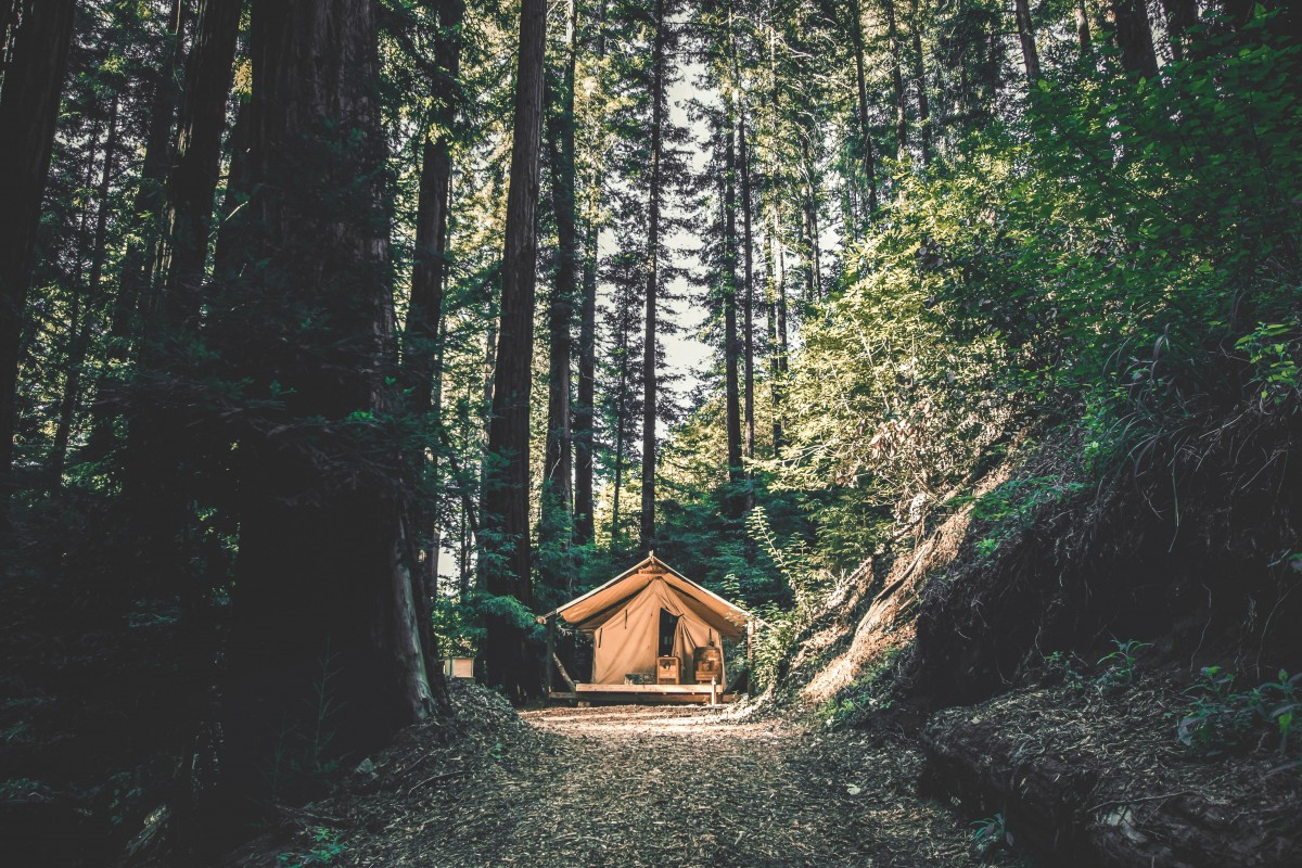 a luxury tent pitched in a forest showing glamping (different from champing)