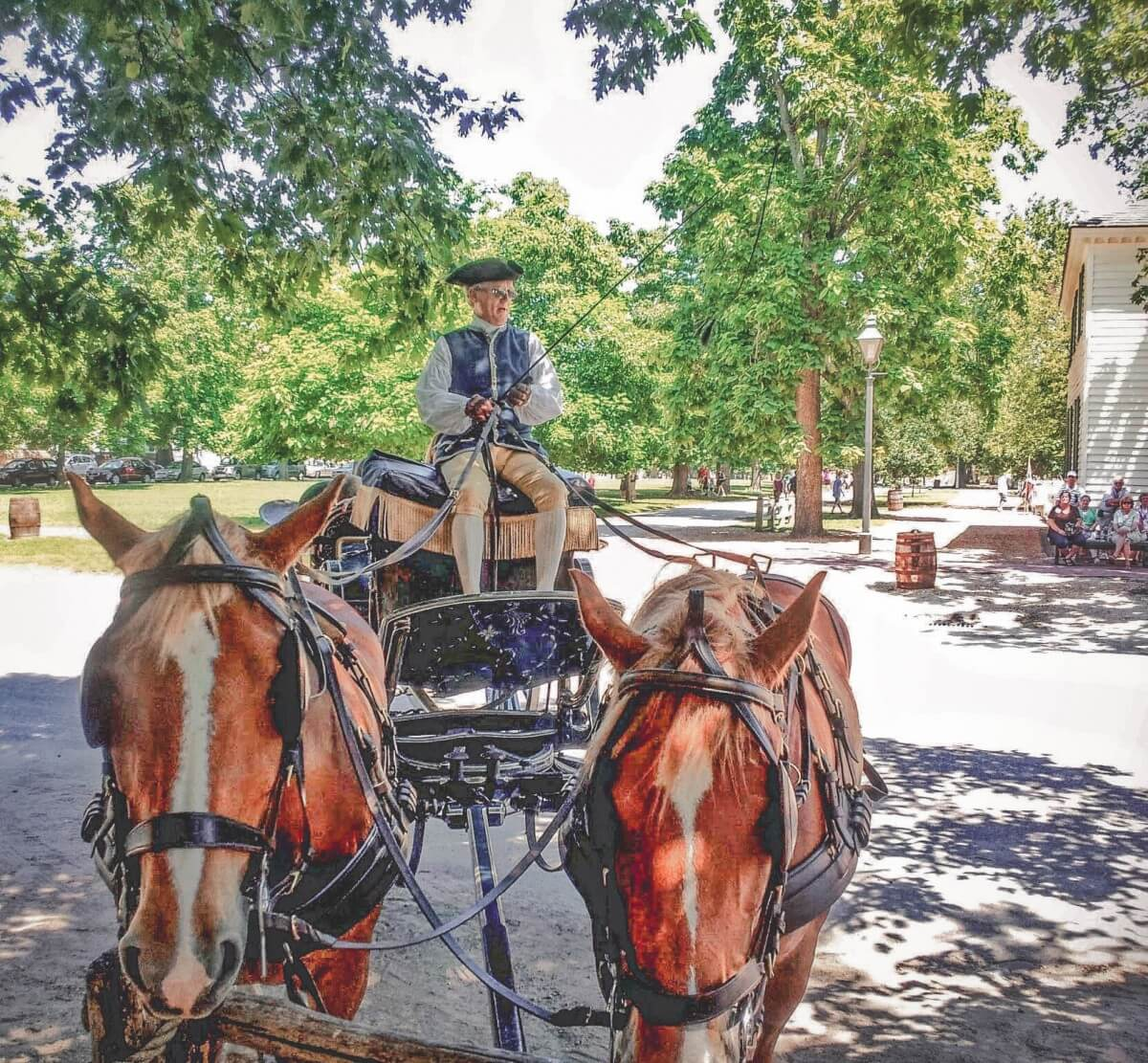 A man, in full revolutionary period costume attire, riding a horse-drawn carriage in Colonial Williamsburg.