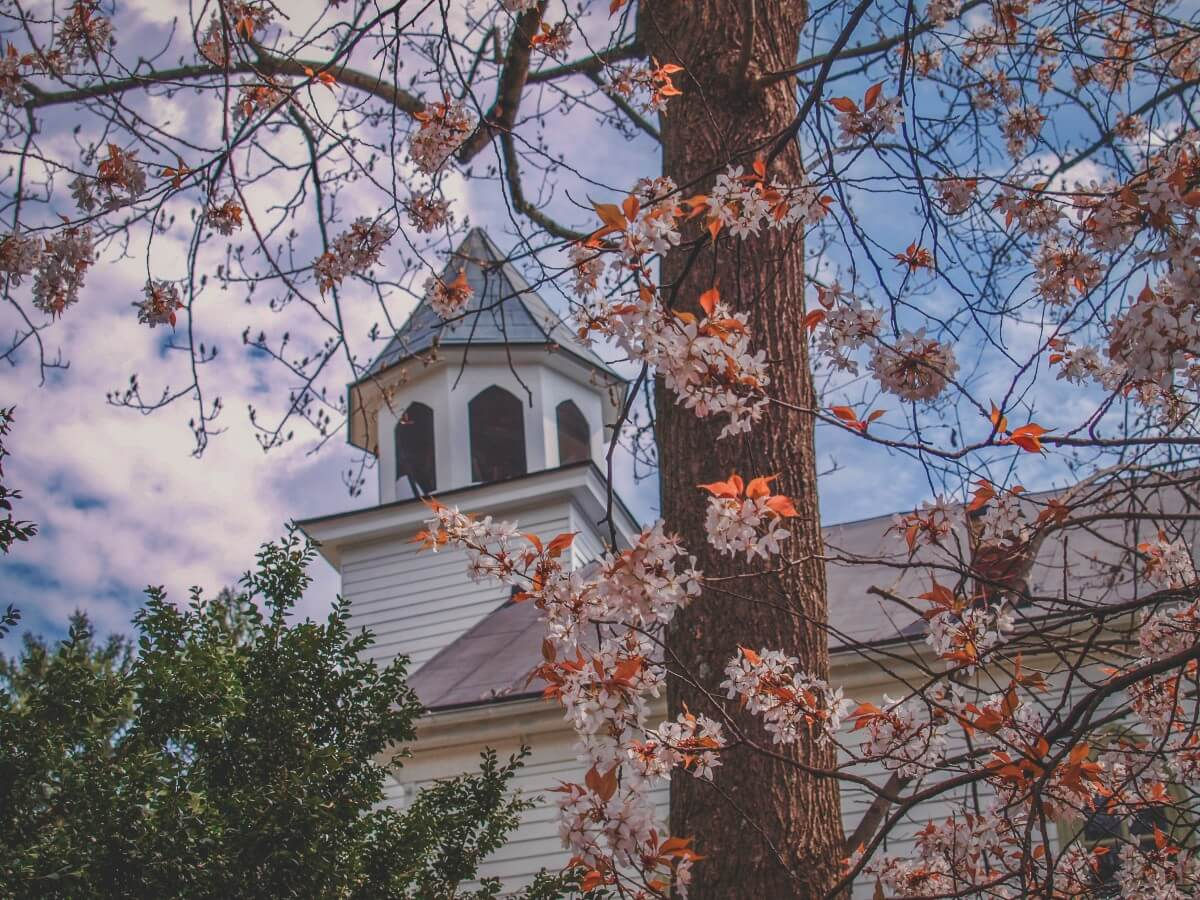 Photo of a steeple covered by flowers in a pretty small town in Virginia