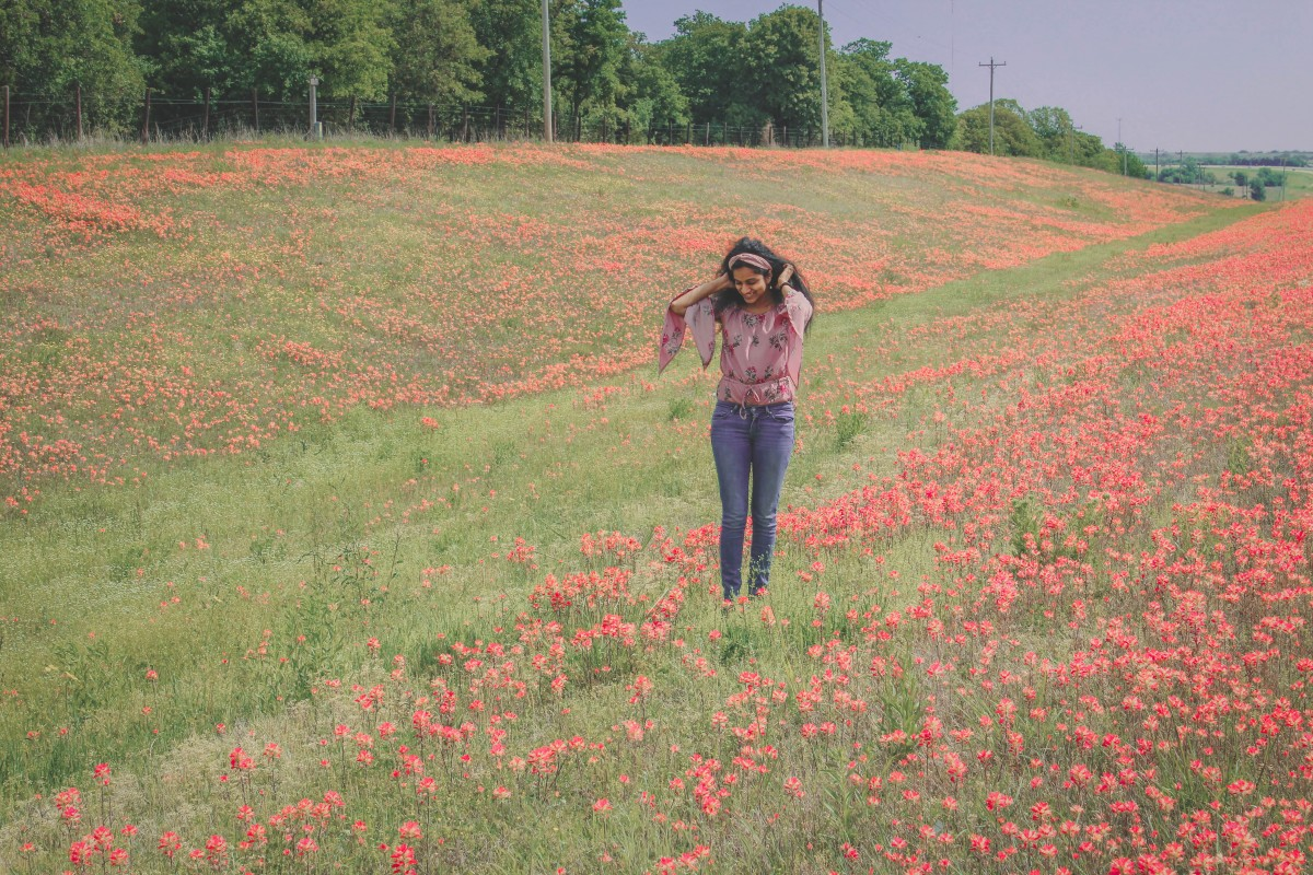Cups of flowers right outside of Wichita Falls