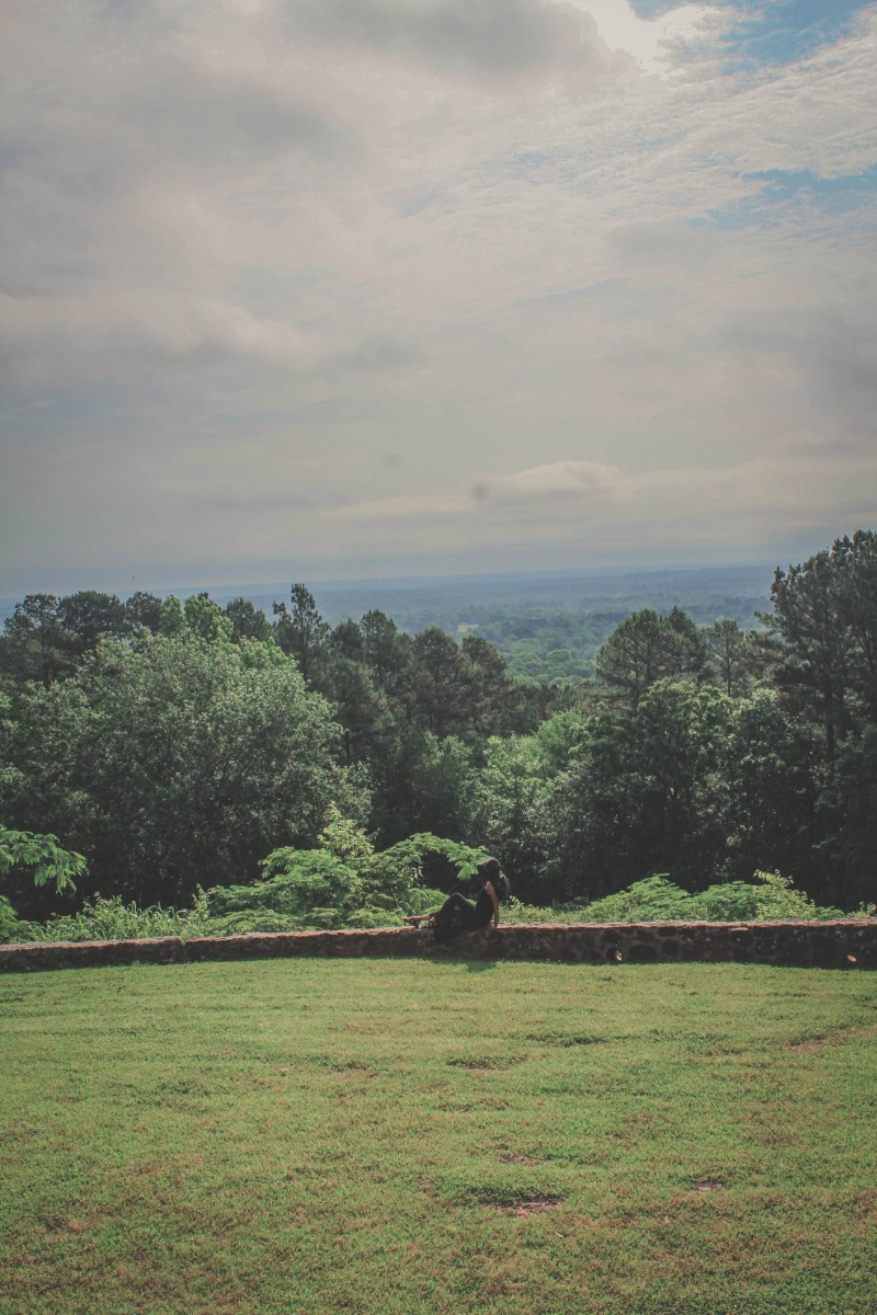 Things to do in East Texas: view from Love's Lookout