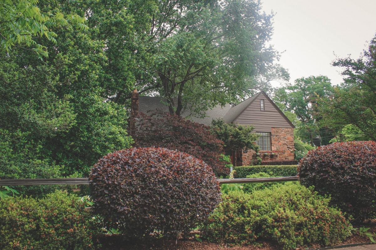 Things to do in East Texas: Azalea trail