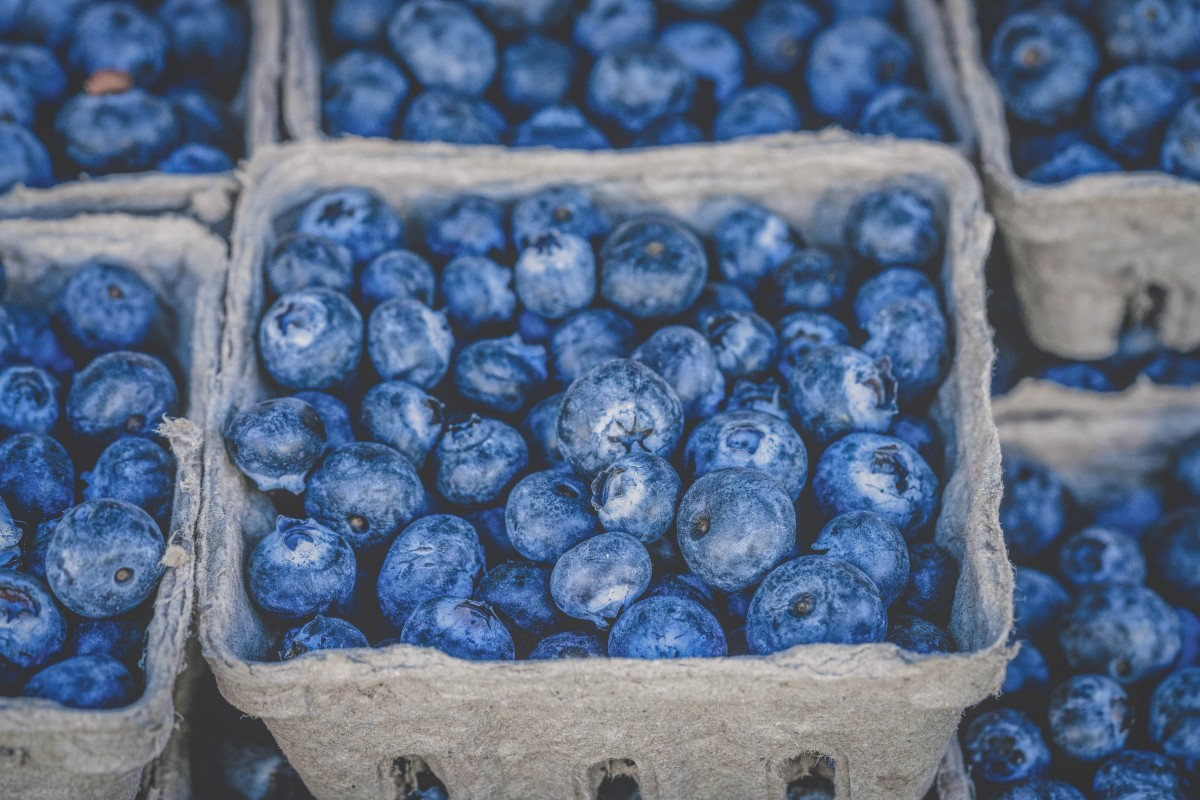 Things to do in East Texas: boxes of blueberries