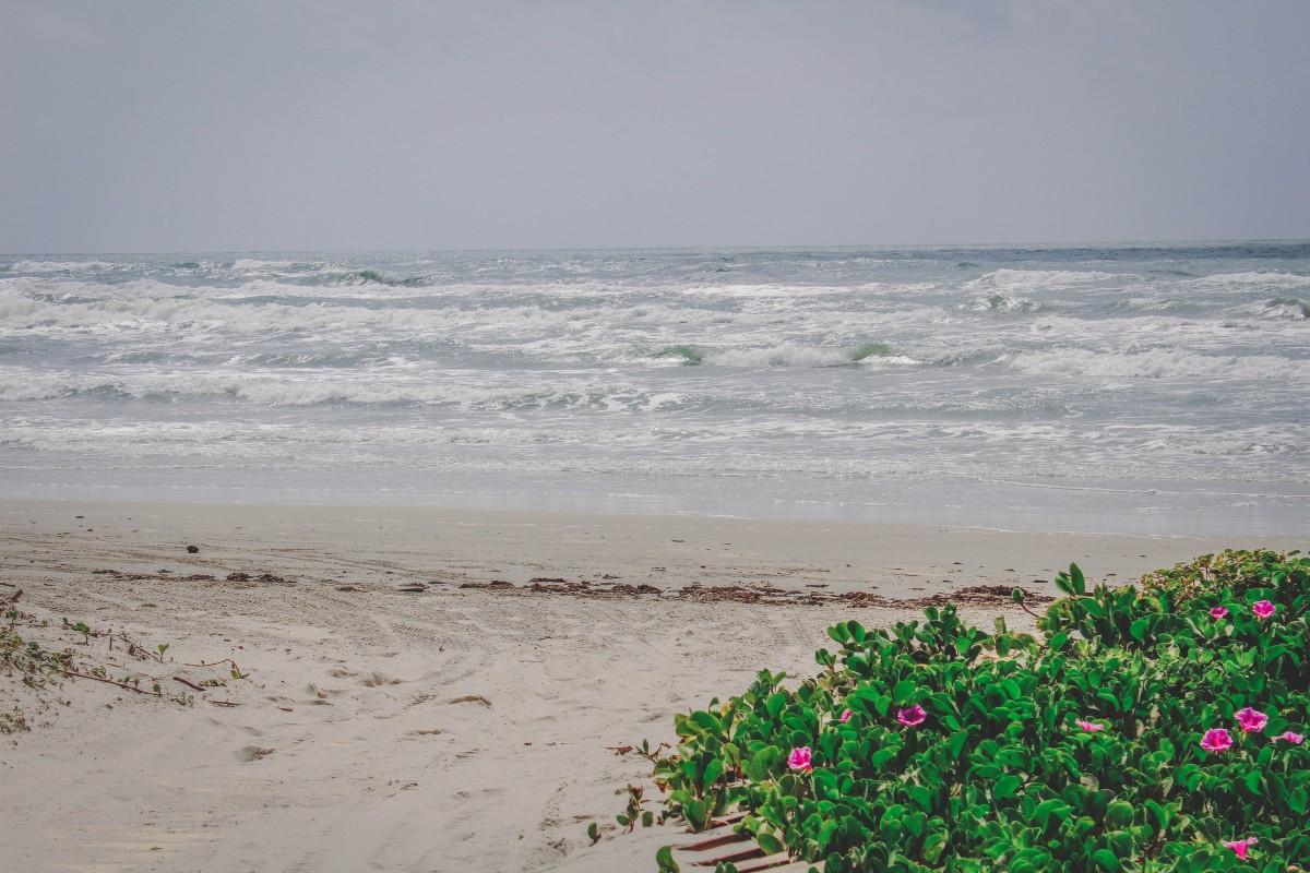 Mustang Island waves