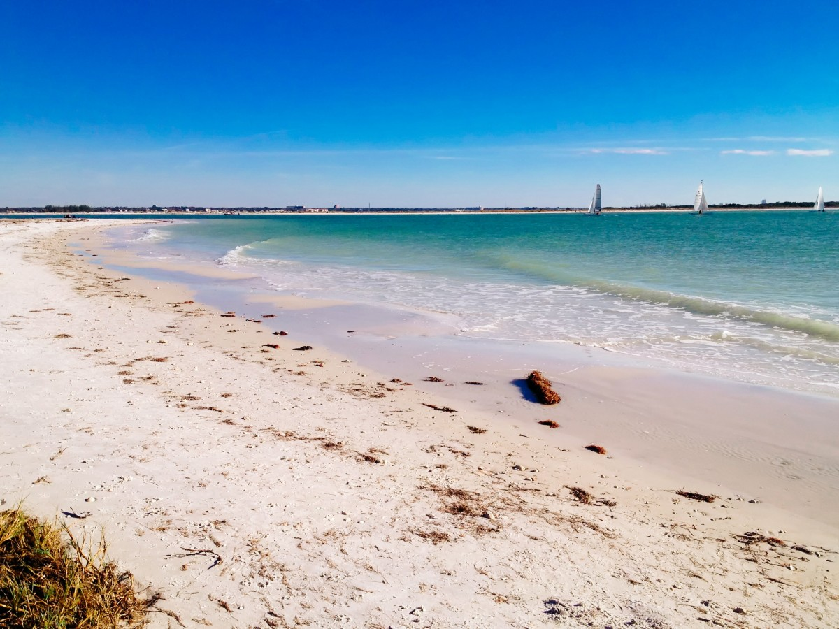 Day Trip To Clearwater Beach: Honeymoon Island