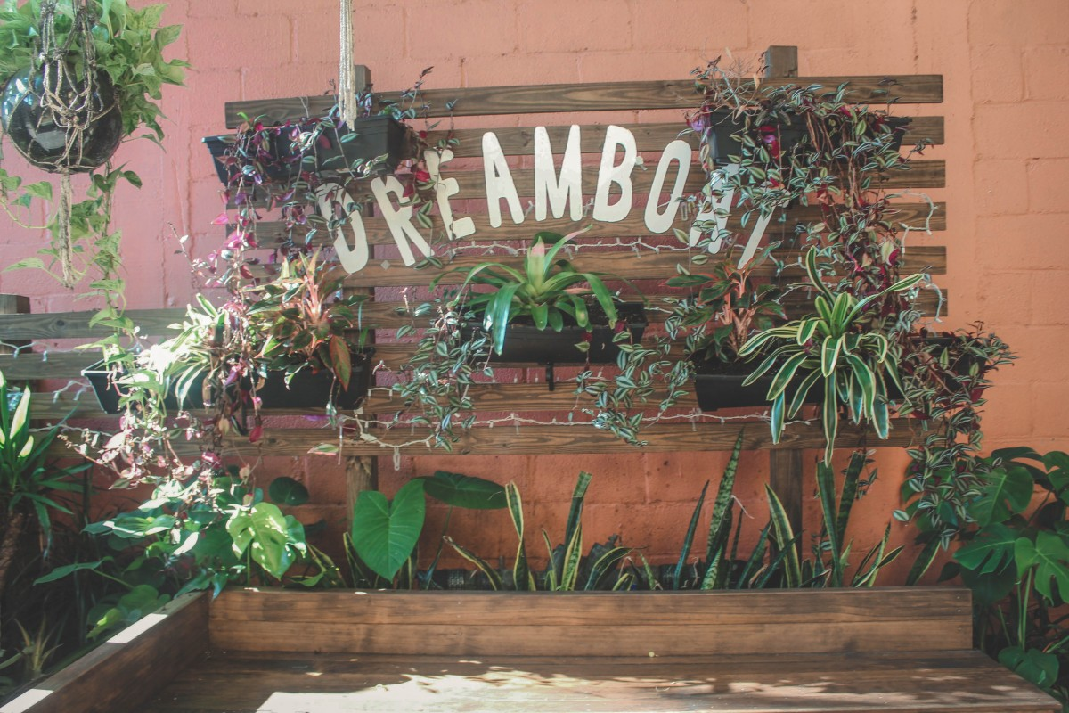 Coffee Shops In St. Augustine: Dream Boat