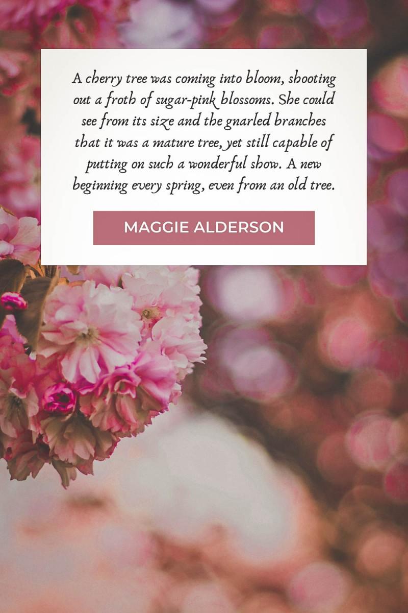 Cherry blossom quotes by Maggie Alderson