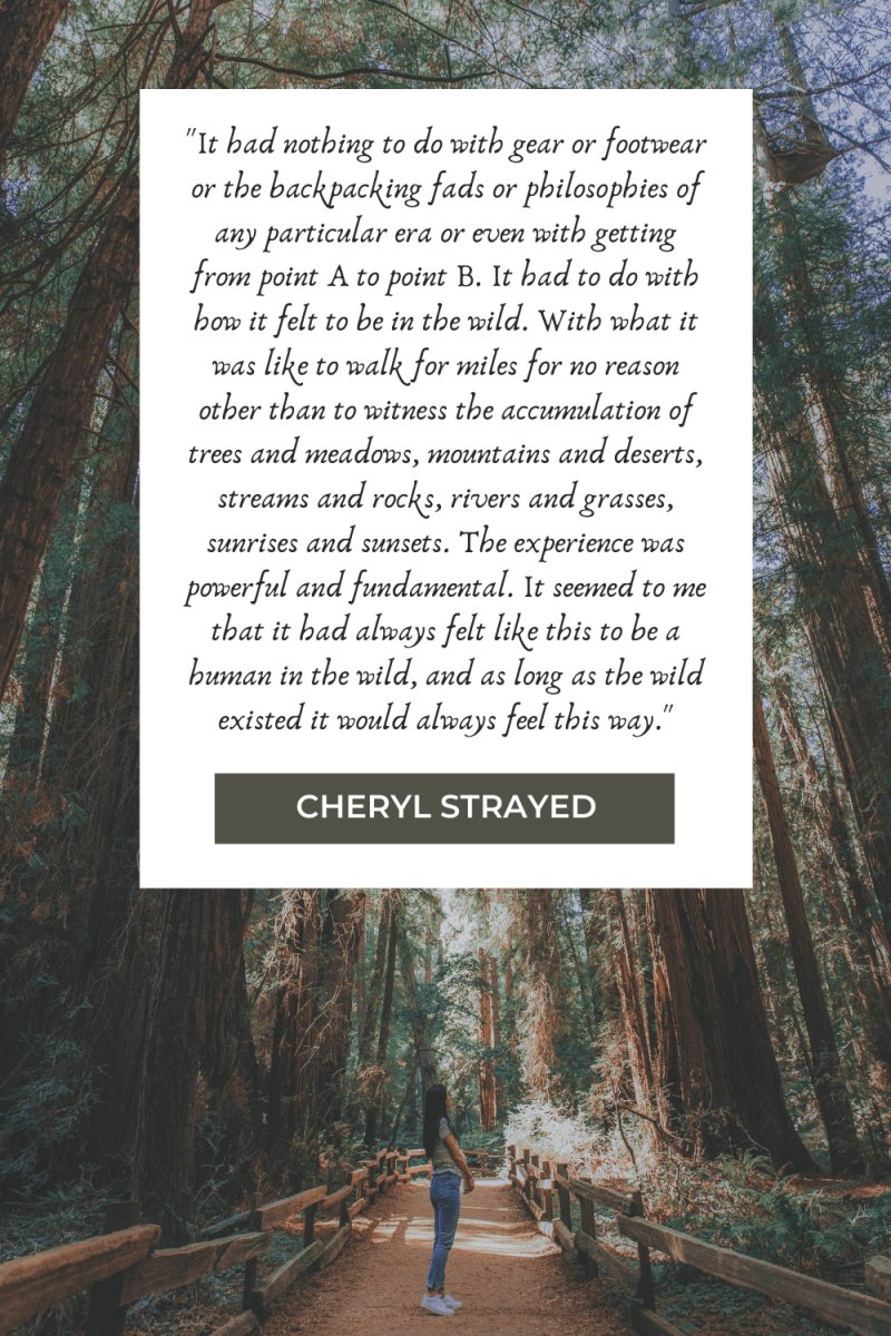 Hiking Quotes by Cheryl Strayed