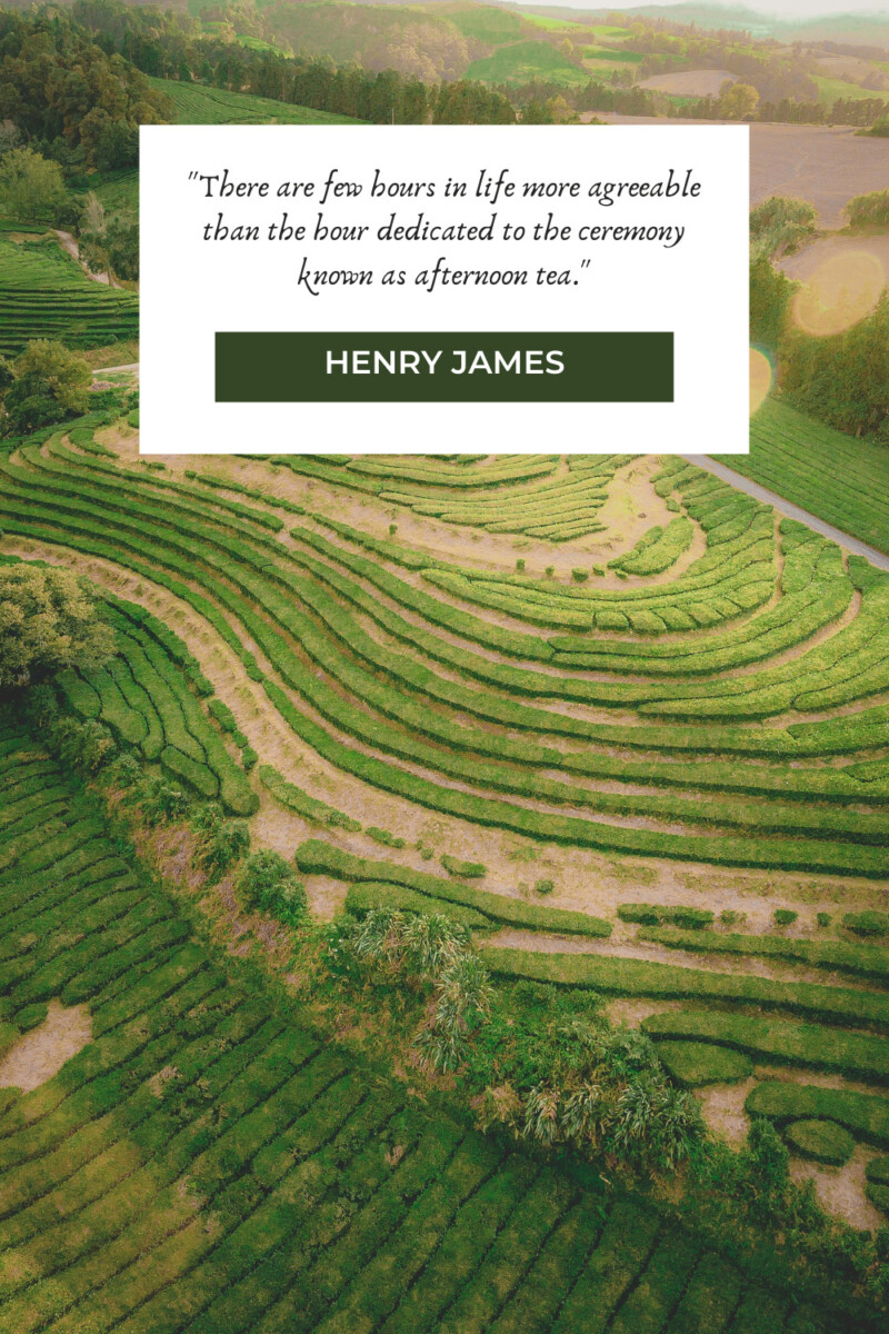 Henry James tea quotes